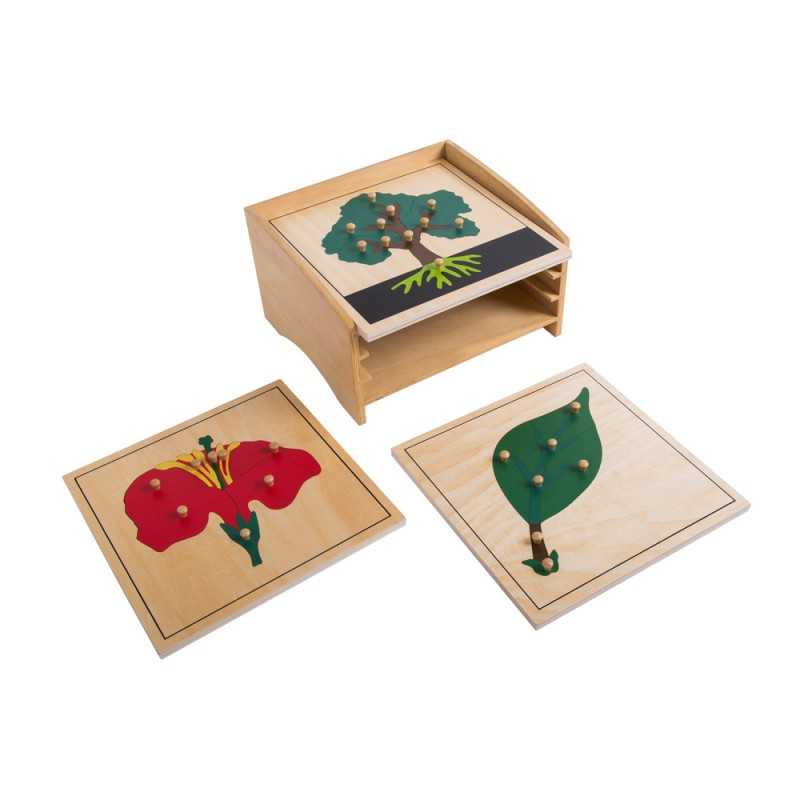 Botany Puzzle Cabinet with 3 Puzzles (LJBO001) by Leader Joy ...
